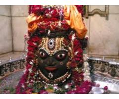 LOVE 2 Love vashikaran>specialist+91-9950325789