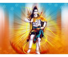 love vashikaran & blackmagic specialist baba +91-8290227355