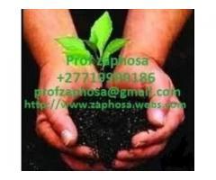 MUTUBA SEED PENIS ENLARGEMENT PRODUCT WHATSAPP/CALL +27719999186 PROF ZAPHOSA