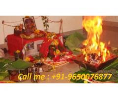 Get your love back by black magic +91-9911764305