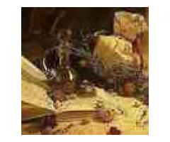 Magic Love Spells by the Native Spell Healer +2773 869 1284