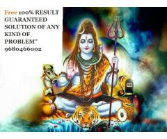 FREE  NO 1 vashikran black magic love solution babaji +9680466002