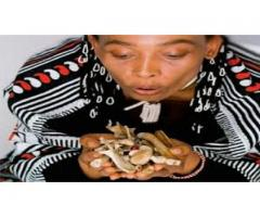 love spell problems, marriage & luck call shiek ali online +256781610206