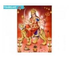 FAst Love Vashikaran Specialist baba +91-9529820007