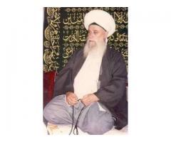 World Famous Vashikaran Astrologer+91-9799970393%&%