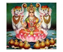 @#@ 9872318509 sautan dushman chutkara problem solution pt Raman sharma in india