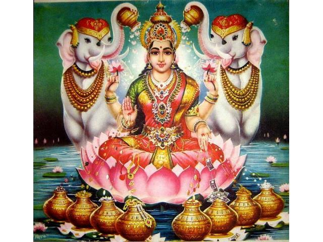 $%$% +91 9872318509 black magic specialist pt Raman sharma in india