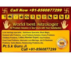 All Problem Solution In Your Life Call Now +91-8560877299