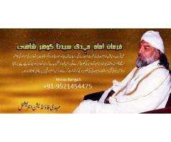 Career problem solution Vashikaran astrology molvi ji +91-9521454475
