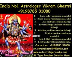 No.1 Astrologer +919878531080 in india,usa,uk,canada,italy,france,germany,england