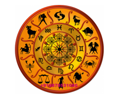 No.1 Astrologer +919878531080 in india