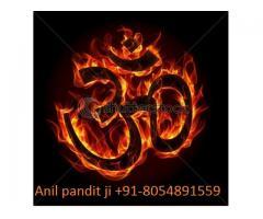 Astrologer By VAshikaraN Specialist baba Ji +91-8054891559